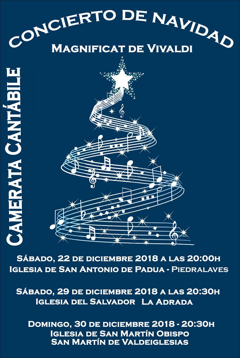 Concierto de Navidad de Camerata Cantábile.