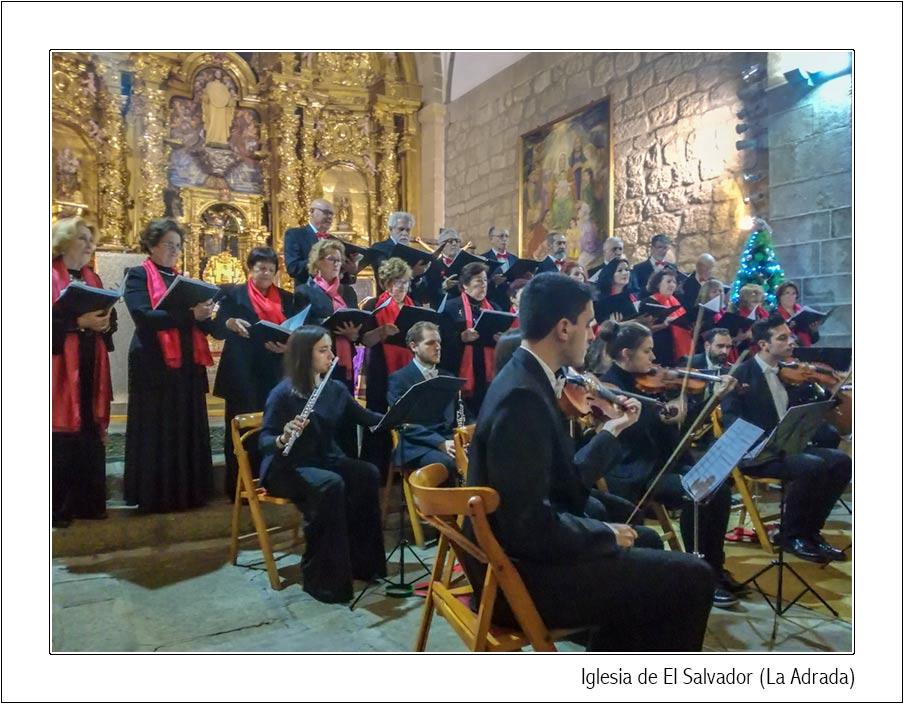 La Camerata Cantabile difundió la alegría de la Navidad