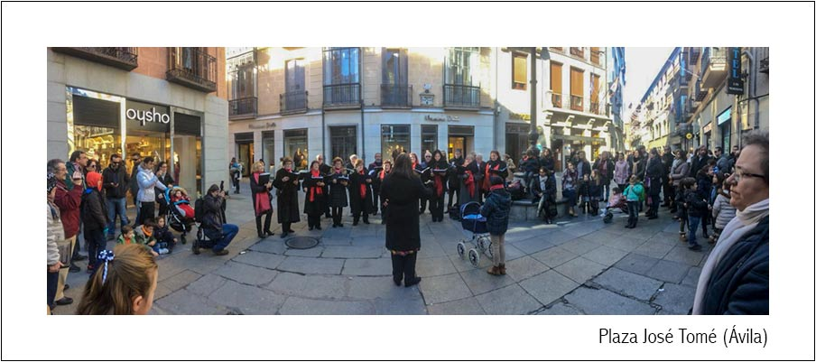 Christmas Festival . Camerata Cantabile